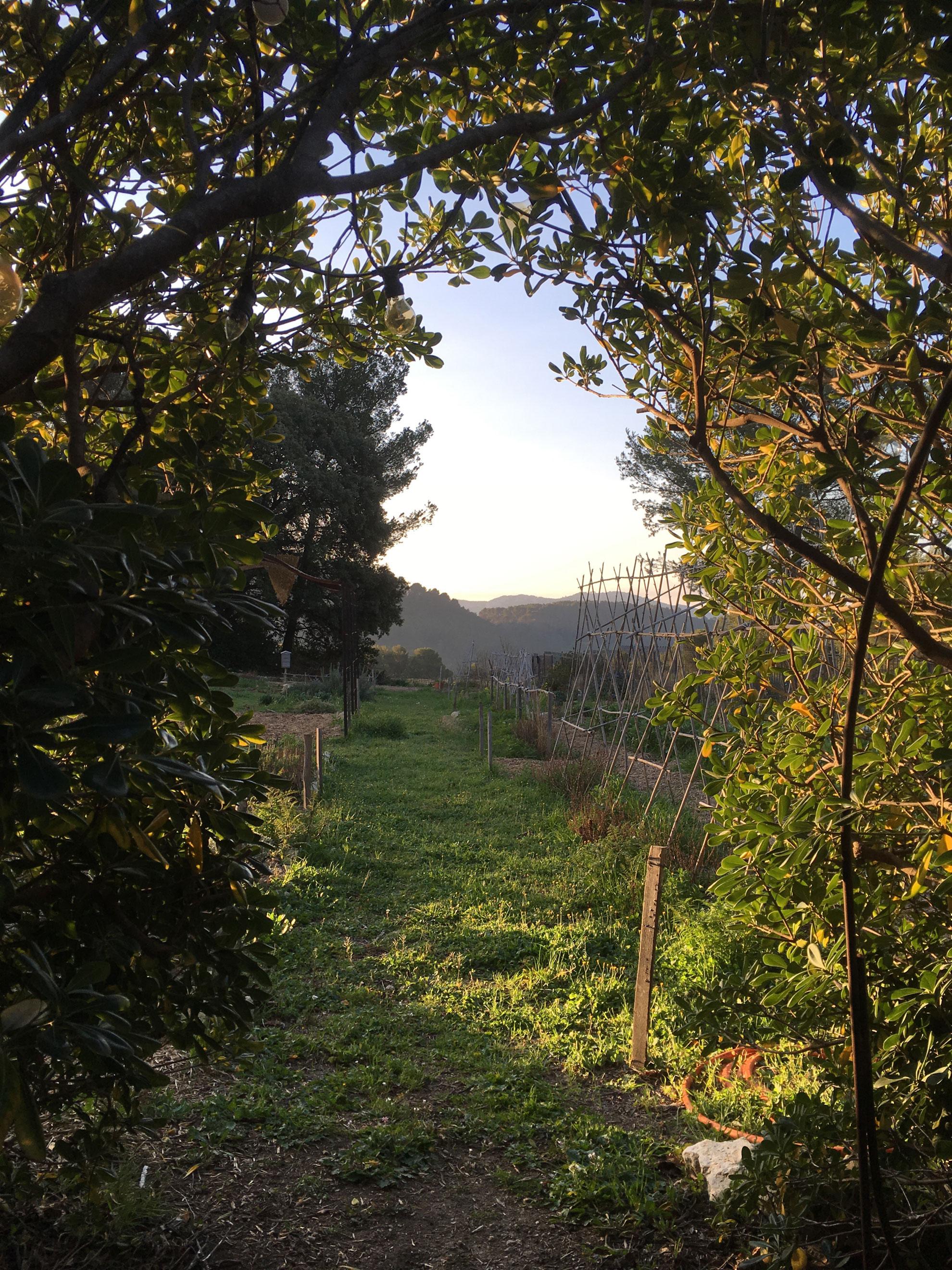 3-jardin.jpg