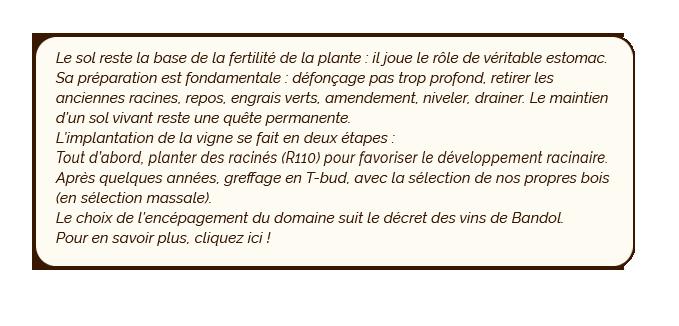btn2-enracinement.png