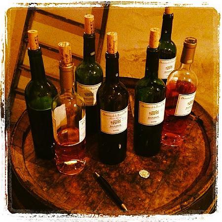 Déguster un vin au Domaine de la Tour du bon